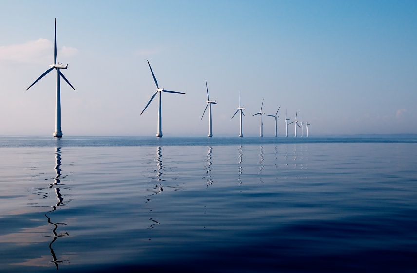 Collaborative Fisheries Planning For Virginia's Wind Energy Area
