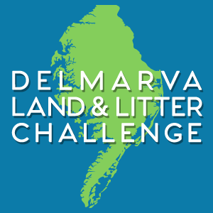 Communications for the Delmarva Land and Litter Challenge